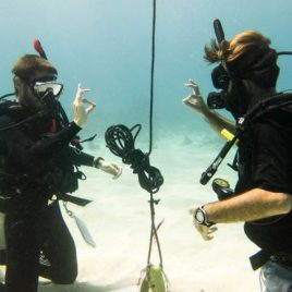 two divers underwater giving the okay signal