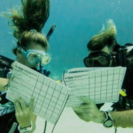 PADI Staff Instructor Training